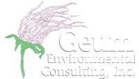 Geum Environmental Consulting, Inc.