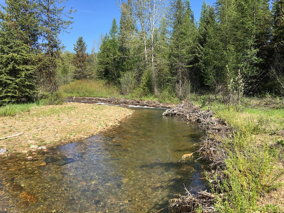 Ninemile Valley Restoration Lolo National Forest